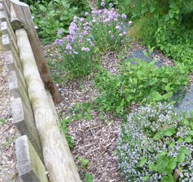 Jardin aromatique et potager de La Chapelle-des-Fougeretz