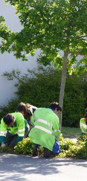 L'entretien des espaces verts de la commune par des employés municipaux