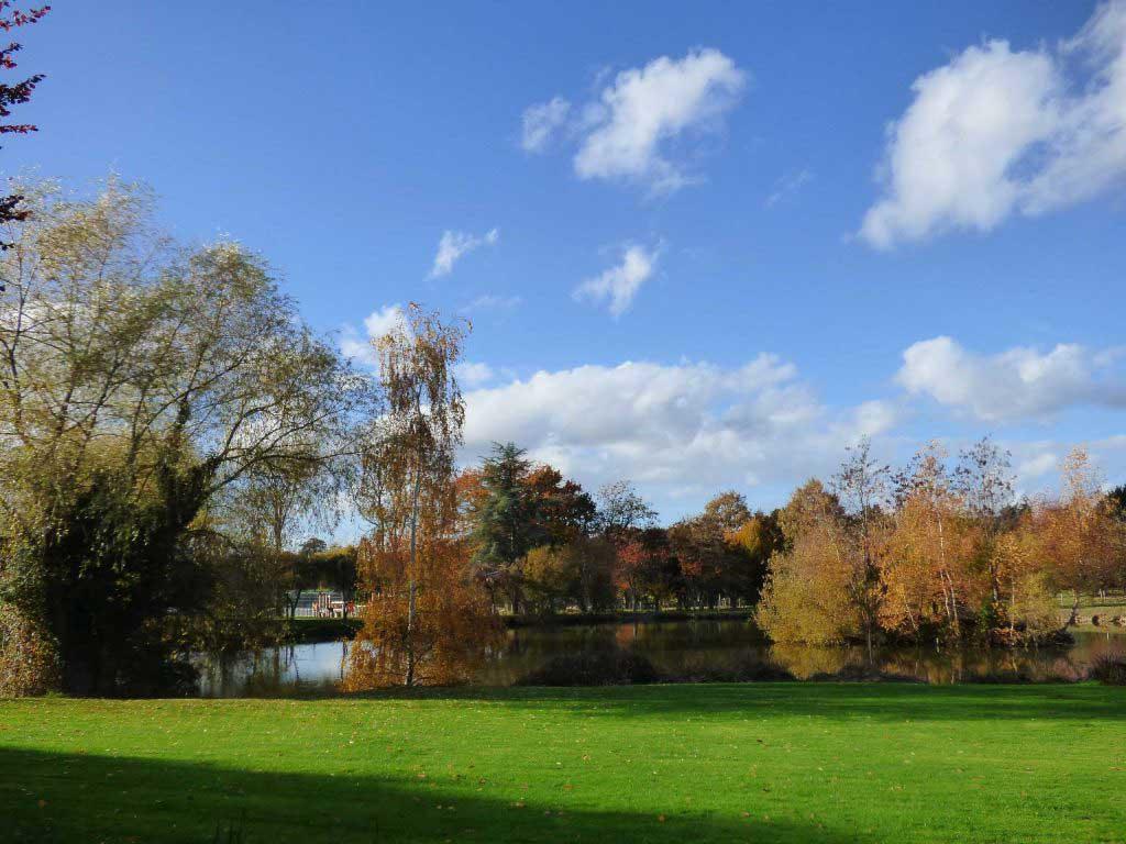 L'étang du Matelon à La Chapelle-des-Fougeretz