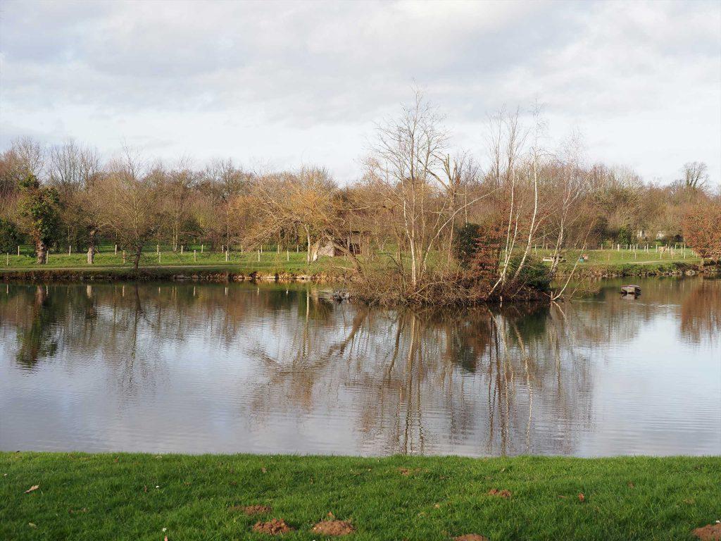 L'étang du matelon à a Chapelle-des-Fougeretz