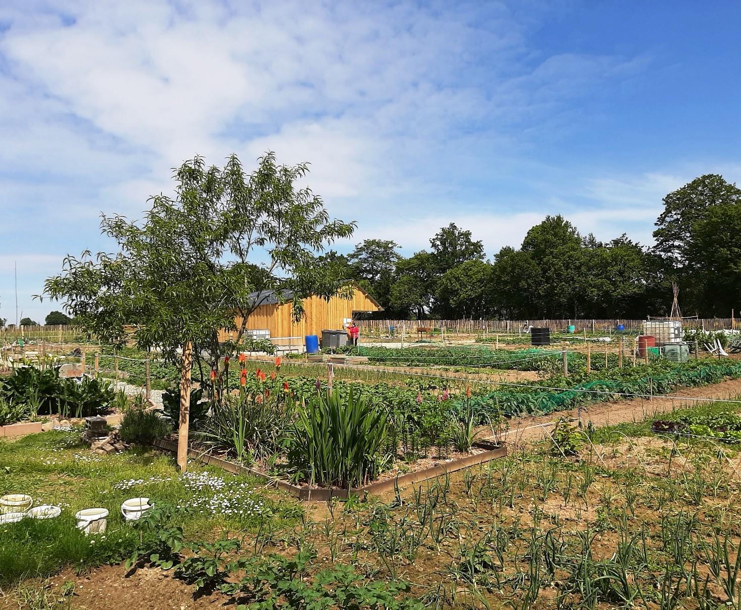 jardins-familiaux-du-matelon