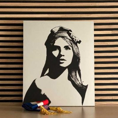 un cadre de Marianne figure symbolique de la République française